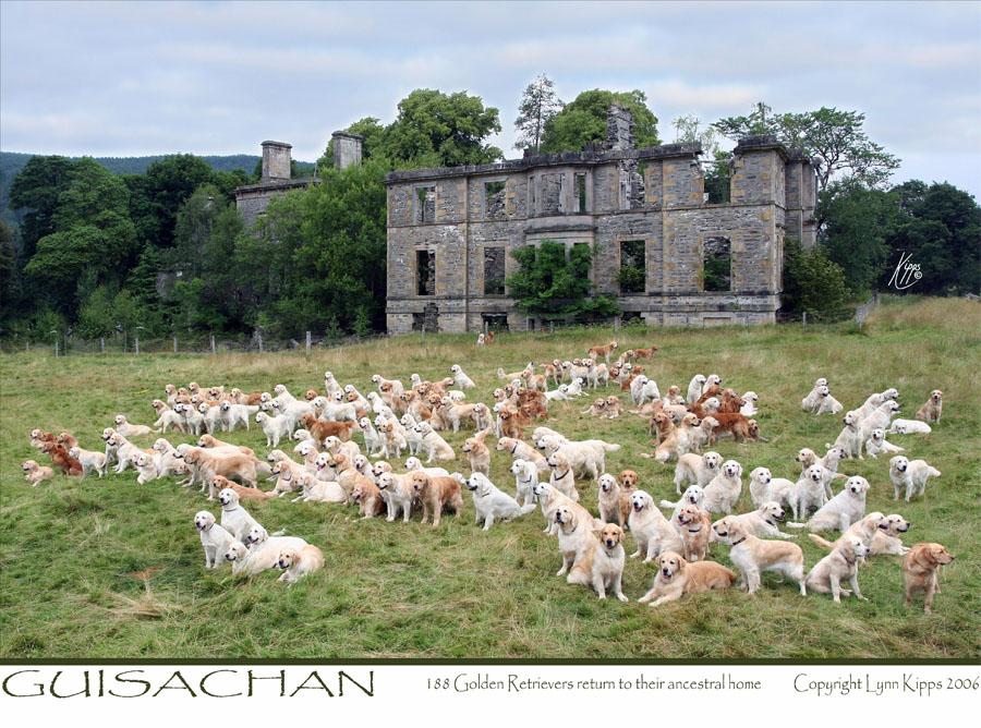 Guisachan House_Lynn Kipps