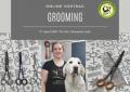 Online Grooming Vortrag am 17.04.2021